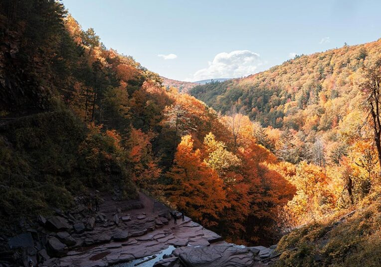 river running through a valley of trees that are autumn coloured
