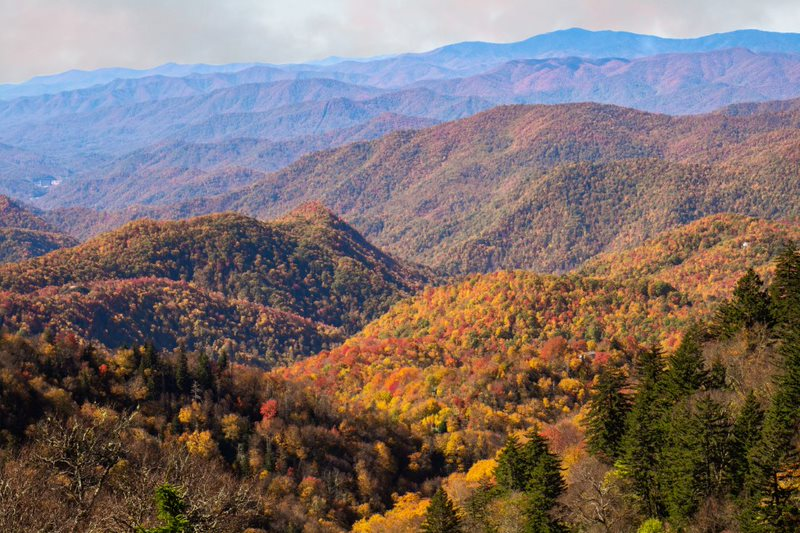 Fall foliage view in the mountains